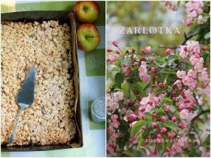 Torta di mele con cannella - szarlotka
