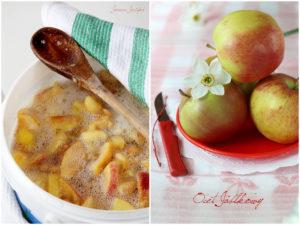domowy ocet jabłkowy,